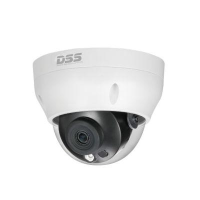 Camera quan sát IP DAHUA DS2230RDIP-S2 (2.0 megapixel, hồng ngoại 30m)